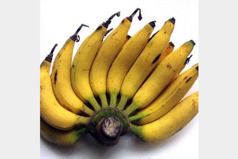 yukiバナナ4