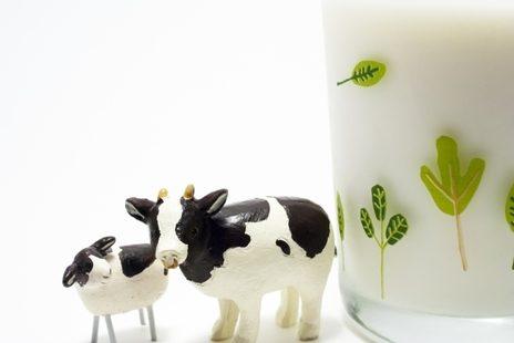 子どもに牛乳は必要か